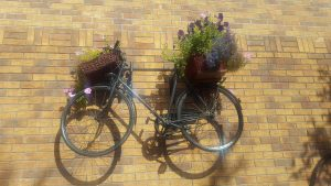 Misparked bikes will be turned into flower baskets!